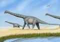 Az Alamosaurus rekonstrukciója
