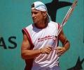 David Ferrer Roland Garros 2009 cropped.jpg