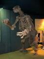 Eremotherium csontváz a washingtoni Természttudományi Múzeumban.