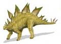 A Stegosaurus stenops rekonstrukciója